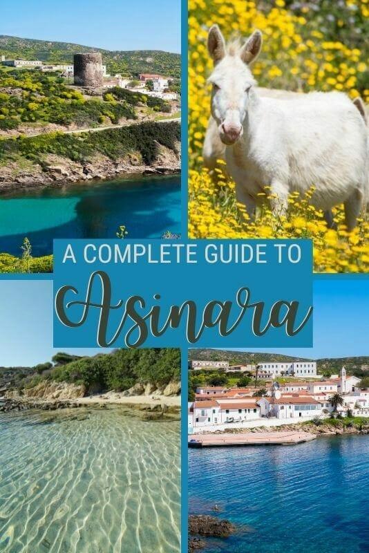 Discover what to see and do in Asinara, Sardinia - via @c_tavani