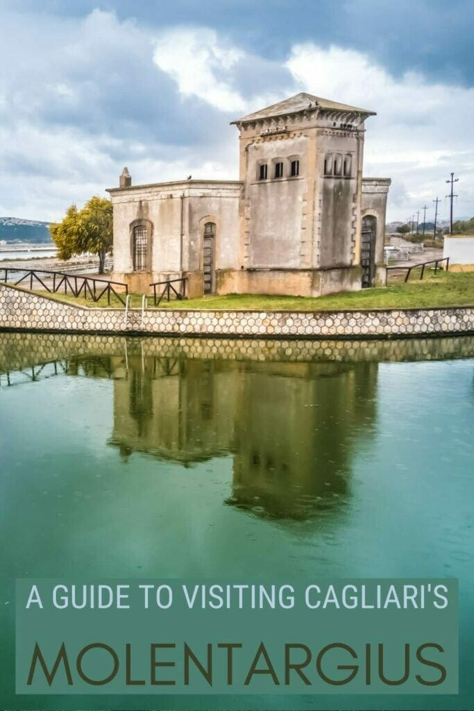 Check out the complete guide to Molentargius Natural Park - via @c_tavani